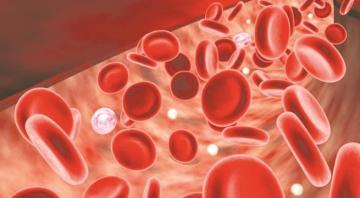 Thiếu máu do thiếu sắt: nguyên nhân và trị liệu